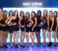 Grey-Goose-9